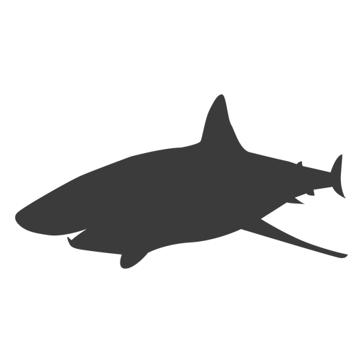 Shark Tail Fin Silhouette Ad Spon Sponsored Tail Fin Silhouette Shark Shark Silhouette Silhouette Png