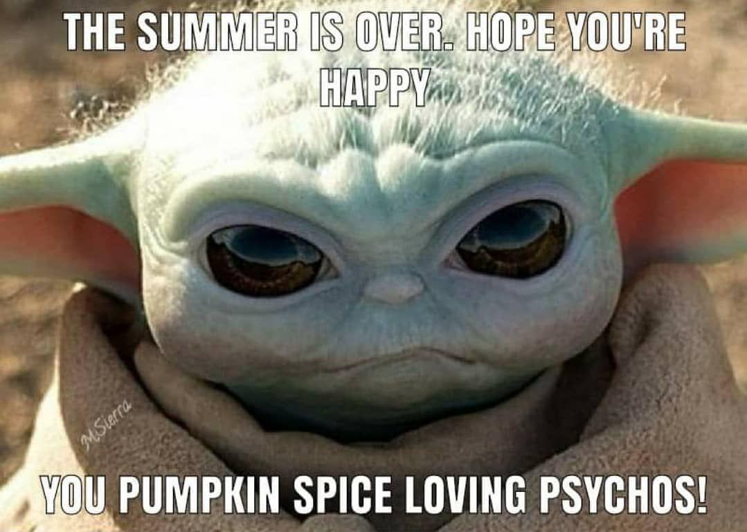 Pin By Ana Nunez On Baby Yoda Yoda Funny Yoda Meme Star Wars Jokes