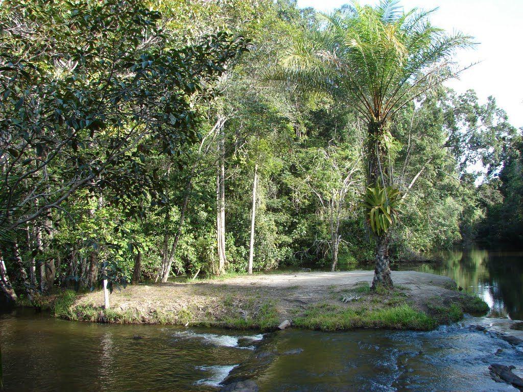 Igrapiúna Bahia fonte: i.pinimg.com