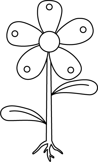 Unlabeled Flower Diagram Clipart Library Clip Art Library In 2020 White Flowers Garden Parts Of A Flower White Gardens