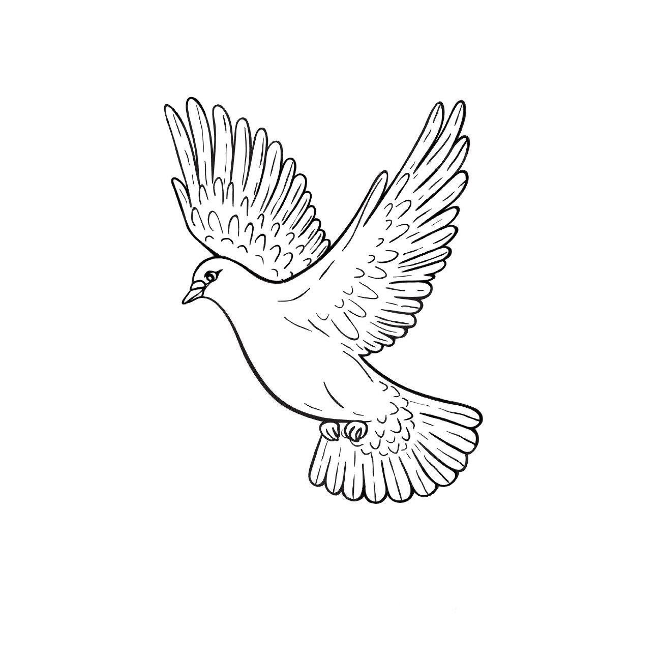 Раскраски «Птицы» - «Летящий голубь» | Рисунки ...