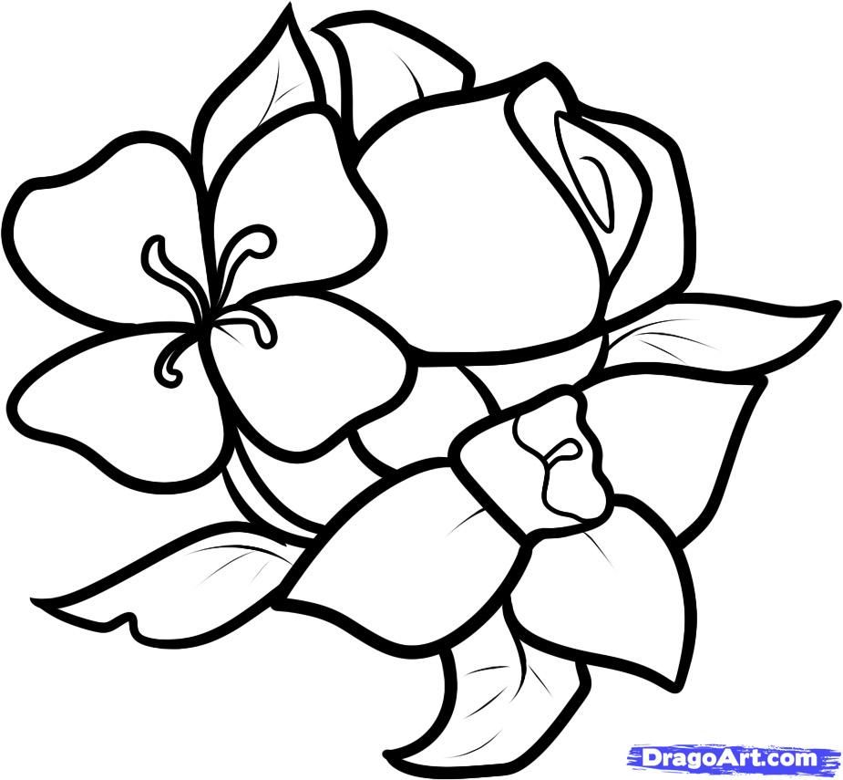 Uncategorized Teach Me How To Draw A Rose easy to draw flowers throughout simple flower drawings imgimg me me