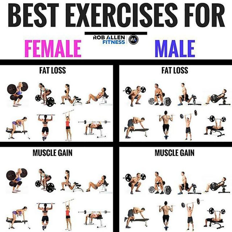 8 Most Effective Exercises For Fat Loss And Muscle Gains Tips