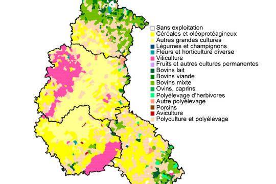 transformée | Agriculture, Champagne ardenne, Horticulture