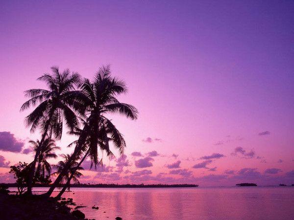 Coucher De Soleil Mauve Et Rose Sur La Mer Coucher De Soleil Fond Ecran Paysage Papier Peint Coucher De Soleil