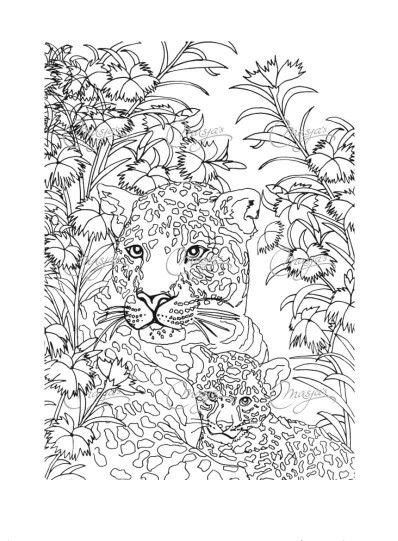 Jaguar Arenado Coloring Pages Adult Coloring Book Pages Adult