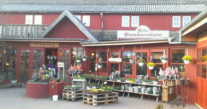 Alte Pommernkate Rambin #wirsindinsel! #rügen Rügen Wir sind - omas küche binz