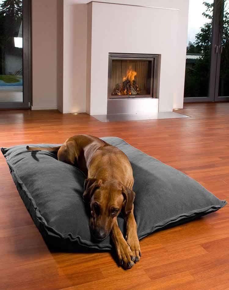 Cuscini Ortopedici Per Cani.Divan Uno Fleece Cuscini Cani Ortopedico Orthopedic Dog Bed Dog