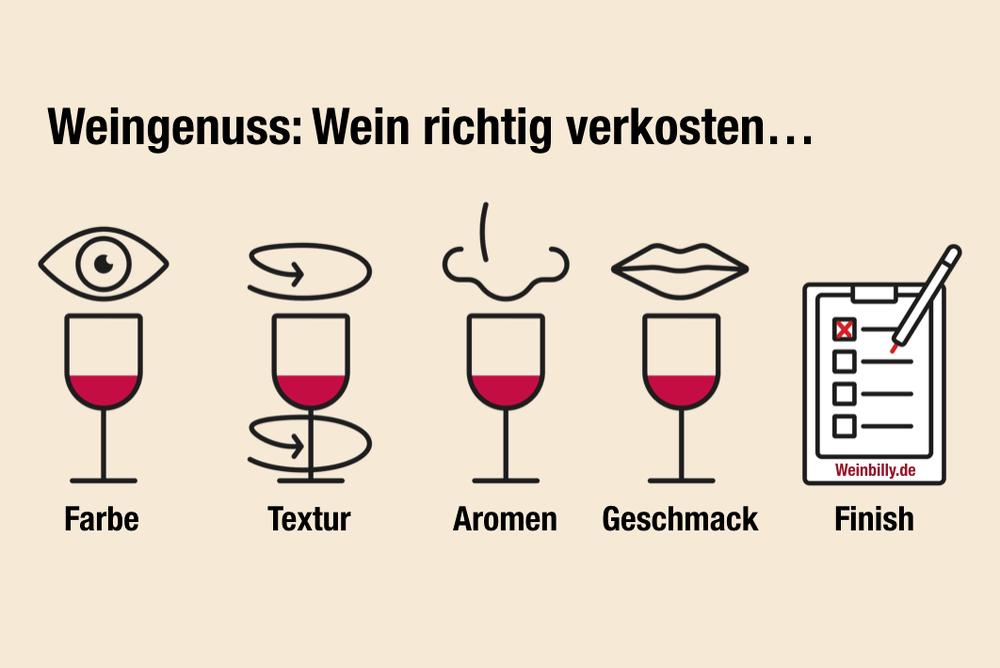 Wein-verkosten-Anleitung.png (1000×668)