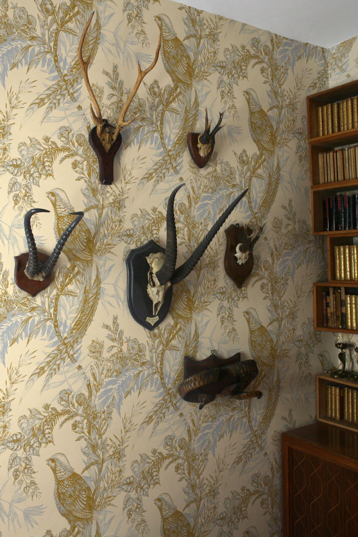 Hallway half wallpaper  Timorous Beasties Wallcoverings  Pheasant  Bedroom  Pinterest