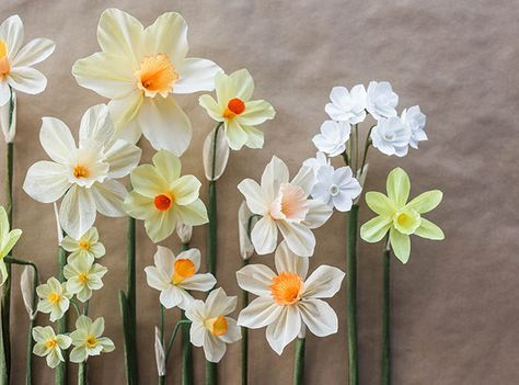 Paper Daffodil Tutorial Flower Crafts Paper Flowers Paper