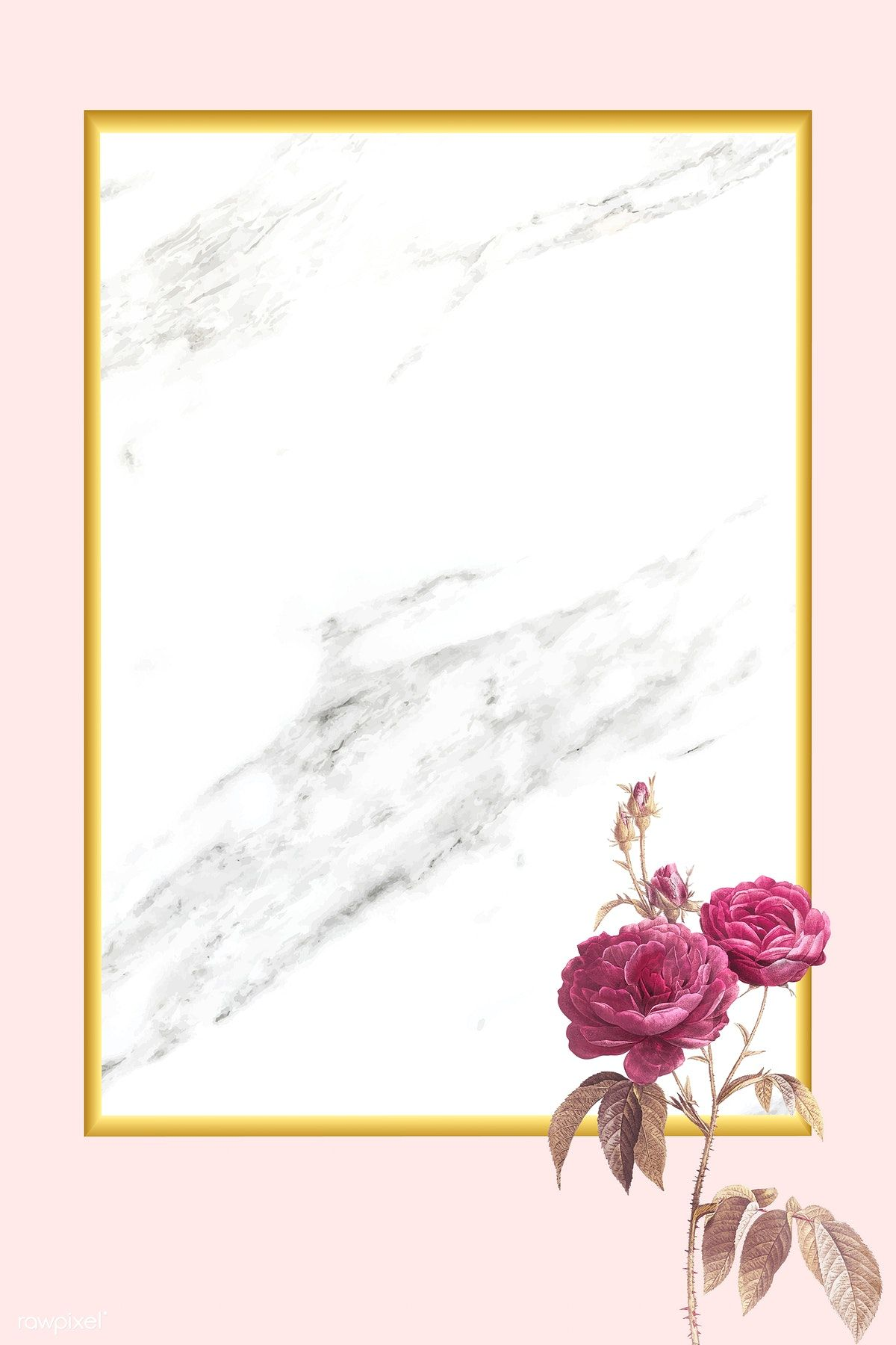 Download premium vector of Pink rose element on marble