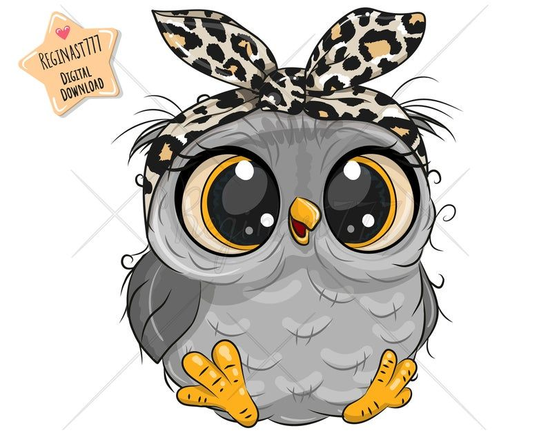 Cute Owl Png Digital Download Owl Clipart Sublimation Etsy Baby Owl Pictures Owl Cartoon Owl Clip Art