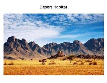 Desert Habitat Mountain Landscape Landscape Wallpaper Namib Desert