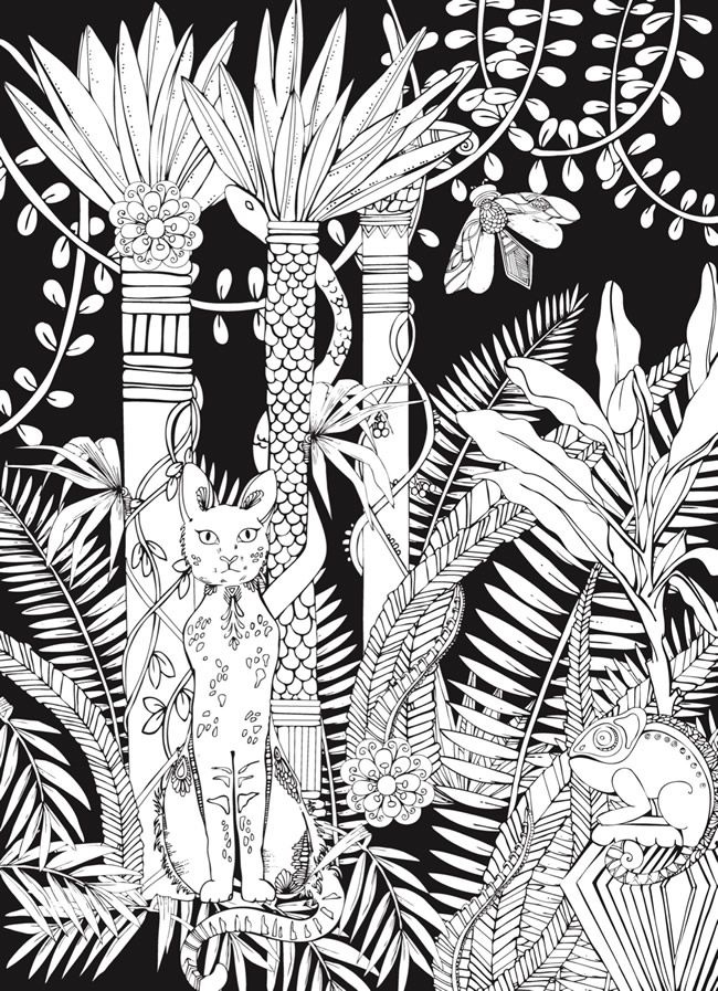 Creative Haven MIDNIGHT SAFARI Coloring Book Wild Animal Designs On A Dramatic Black Background By Lindsey Boylan Welcome To Dover Publications COLORING