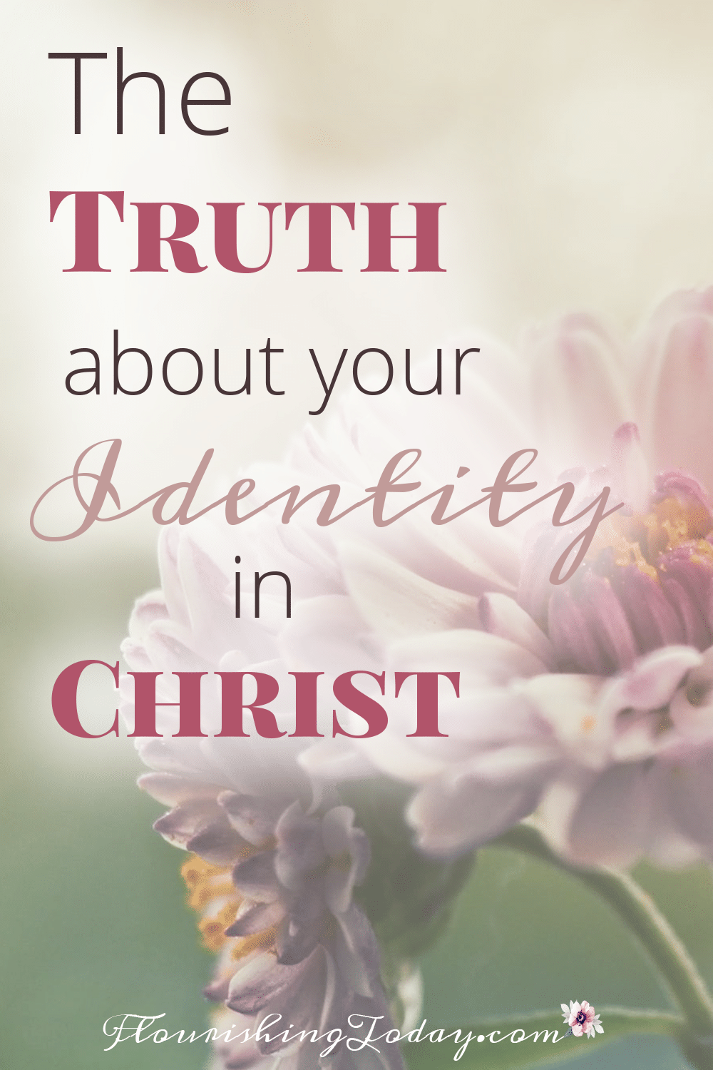 The truth about your identity in christ scripture cards the truth about your identity in christ kristyandbryce Gallery