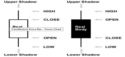 Understanding The Basic Forex Charts In Market Chart Learning