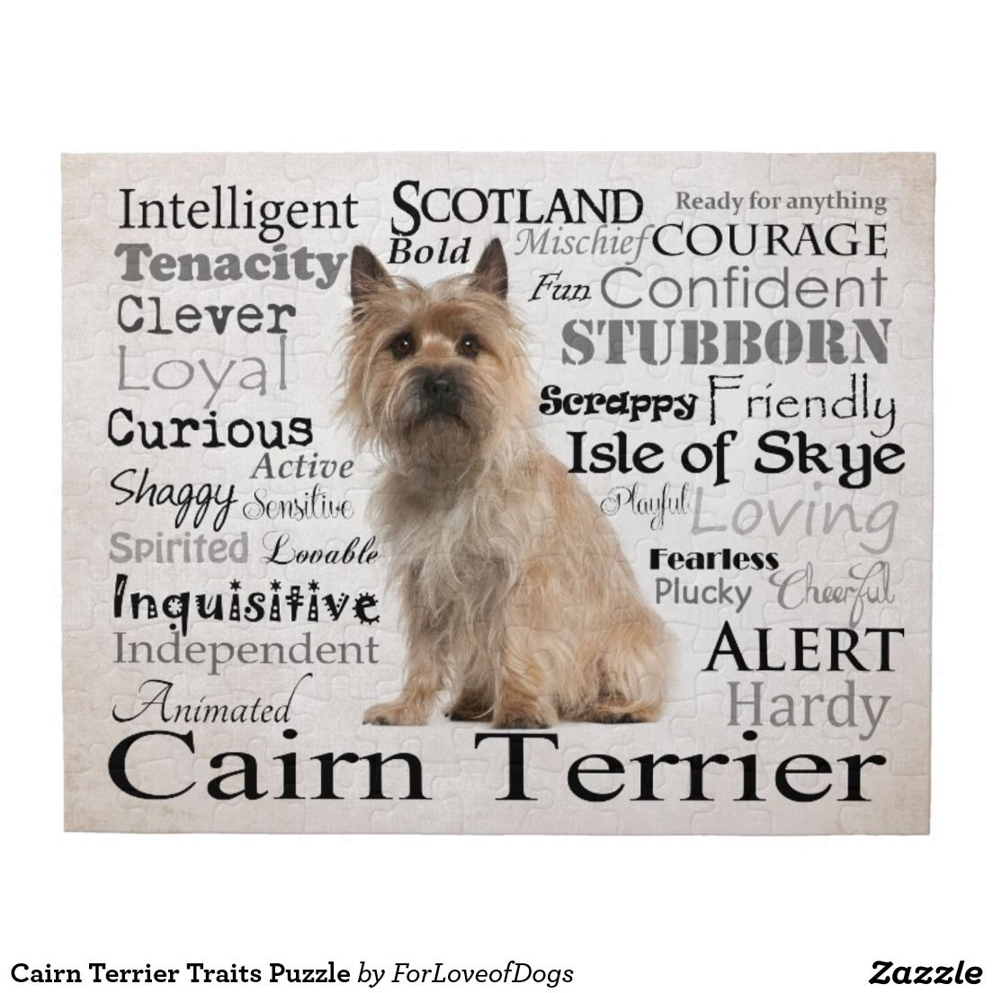 Cairn Terrier Traits Puzzle Zazzle Com Cairn Terrier Pitbull