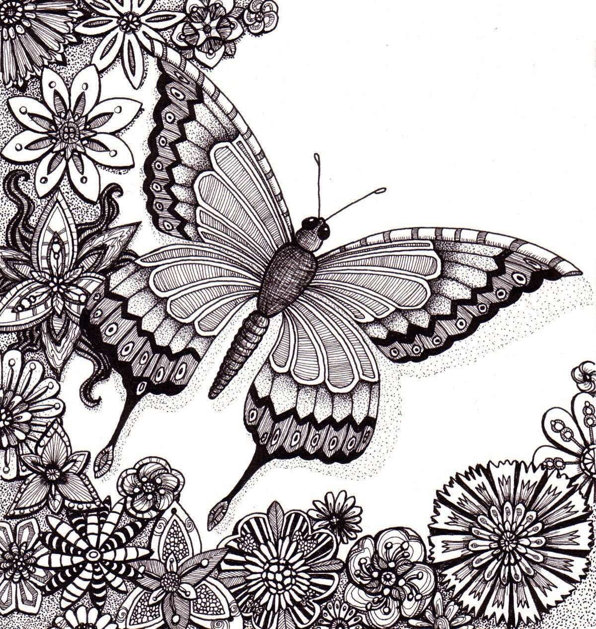 Nice Butterfly Coloring Page For Adults Zentangle Art Butterfly Coloring Page Ink Drawing Illustration [ 1267 x 1200 Pixel ]