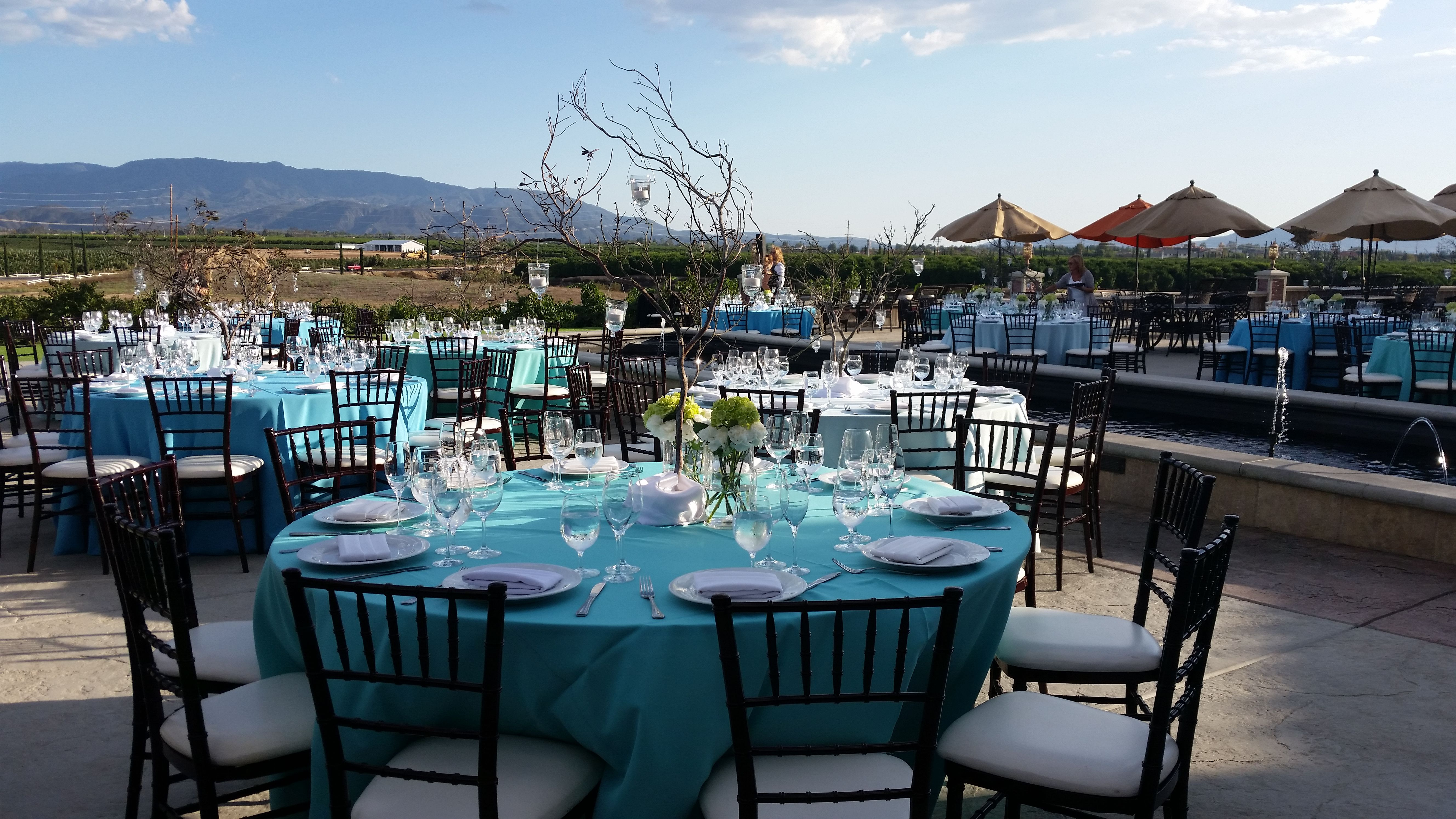 A pop of blues among all the green vineyards | Wedding designs ...