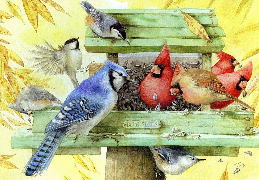 Анимация птицы на кормушке, рождением