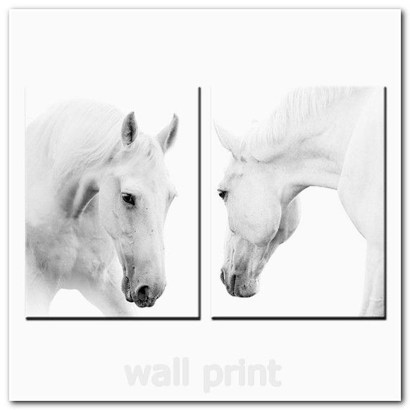 Youkuart canvas wall art white horses picture painting on canvas print modern home decorations wall art