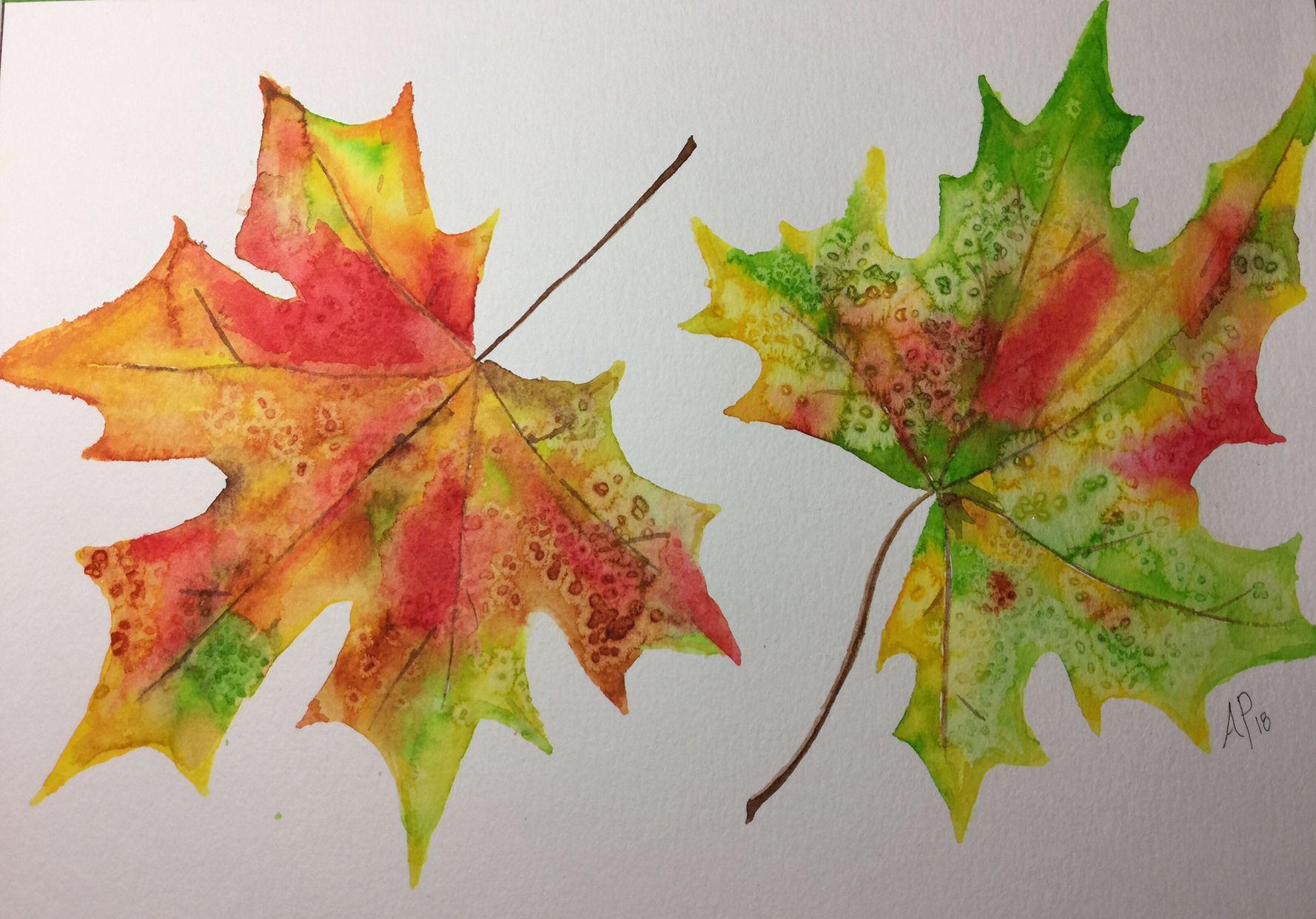 Watercolor Fall Leaves Amy Pinker Art Sarah Cray Tutorial