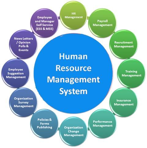 Human Resource Management System Purposes And Functionsby Http