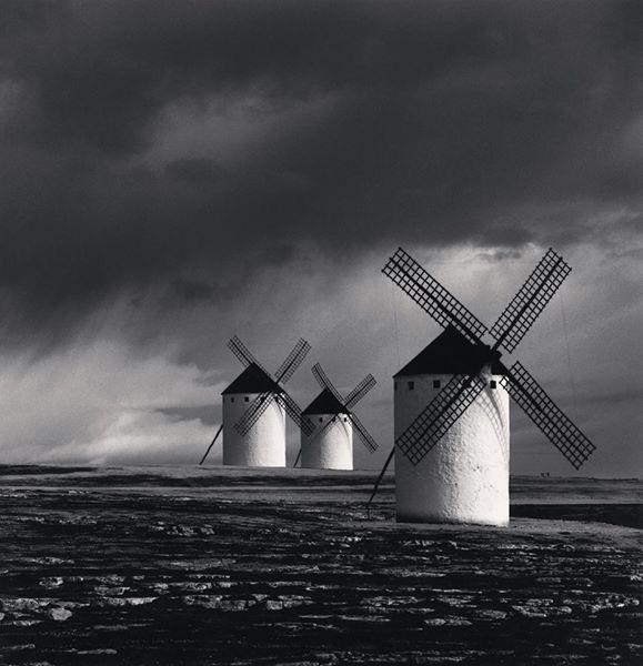 Quando soffia il vento del cambiamento, c'è chi costruisce muri e chi mulini a vento...