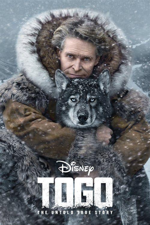 توغو (2019) فيلم كامل in 2020 Download movies, Togo, Movies