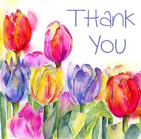 Thank You Greeting Card   Visit my web site at www.sheilagill.co.uk