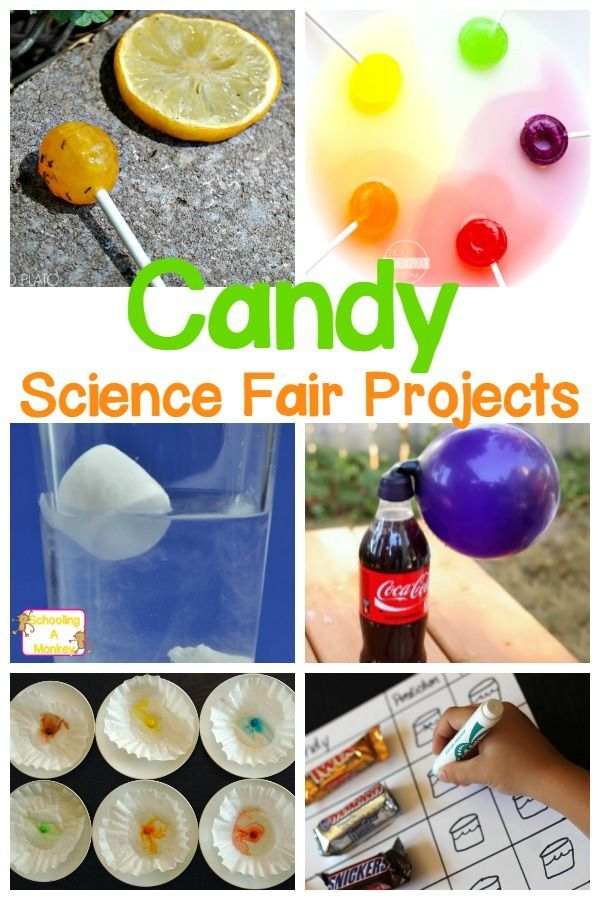 Easy Candy Science Fair Projects Kids And Parents Will Love