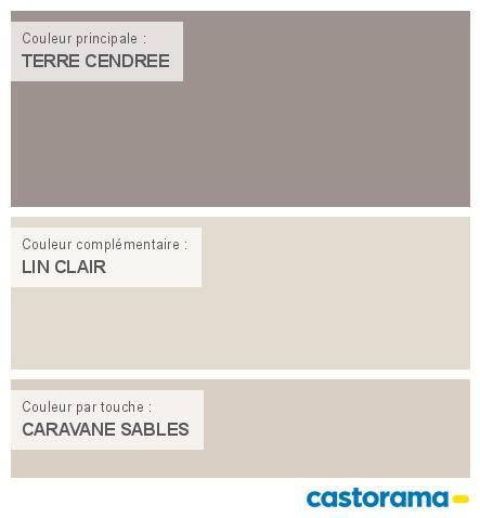castorama nuancier peinture mon harmonie peinture terre cendree satin de dulux valentine cr me. Black Bedroom Furniture Sets. Home Design Ideas
