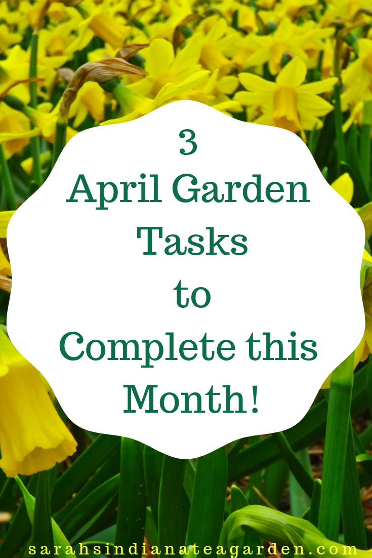 3 April Garden Tasks To Complete This Month Gardening For