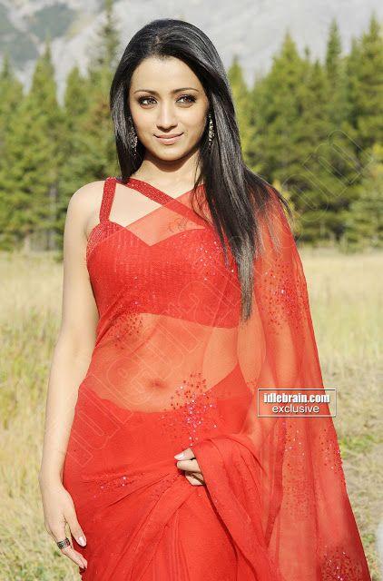 Sexy indische Mädchen in Sarees