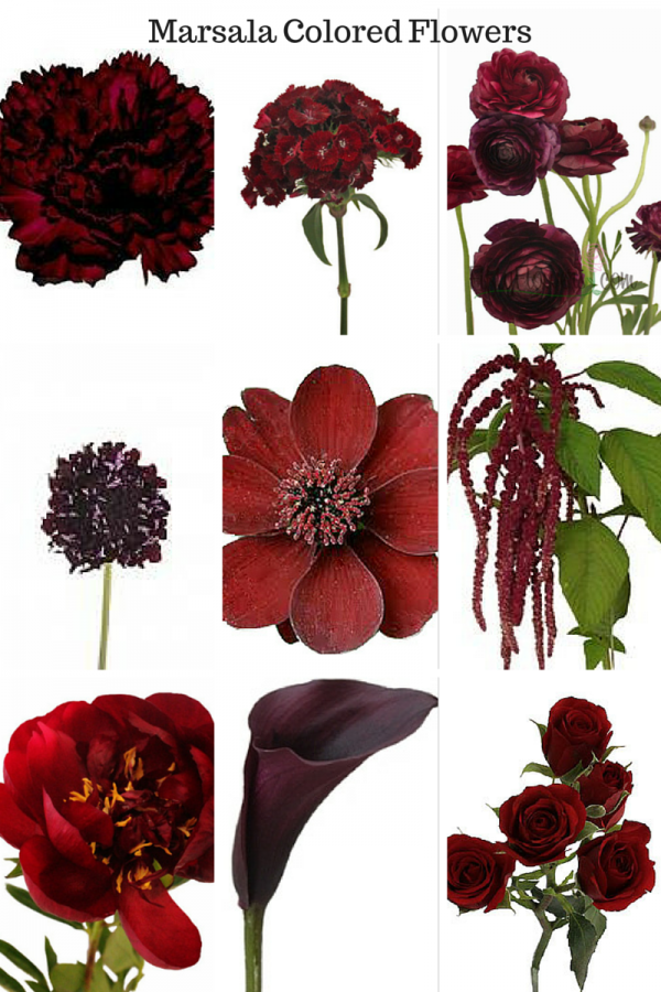 Top Picks For Marsala Colored Flowers When Pantone Announced Their 2015 Color Of The Year It Was No Surprise Marsala Color Wedding Flowers Wedding Palette
