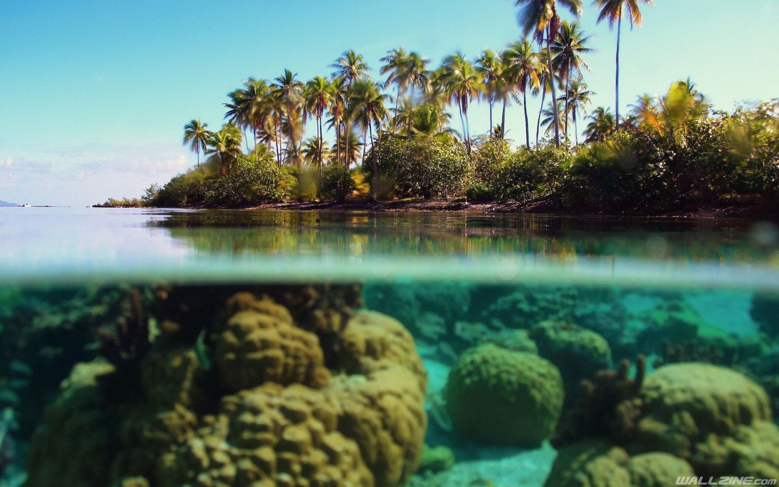 hd desktop a· beach underwater wallpaper