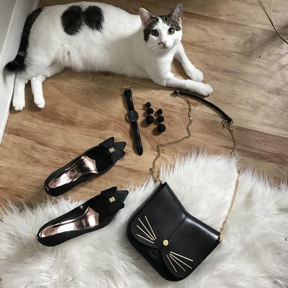 Ted Baker cat Kitten adoption, Cat adoption, Cat purse