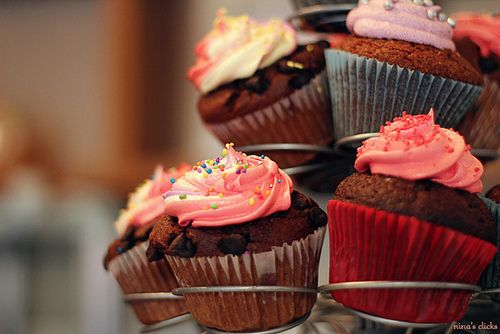 cupcakes. ♡