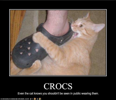 everyone that wears crocs should see this