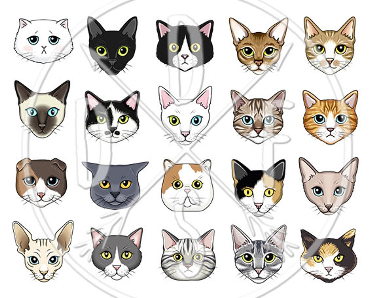 Cat Faces Clipart Black White Tabby Siamese Sphynx Etsy In 2020 Cat Face Cat Face Drawing Cat Drawing