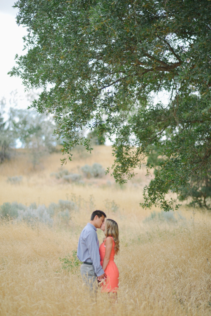 hailey   ty. utah wedding photographer.