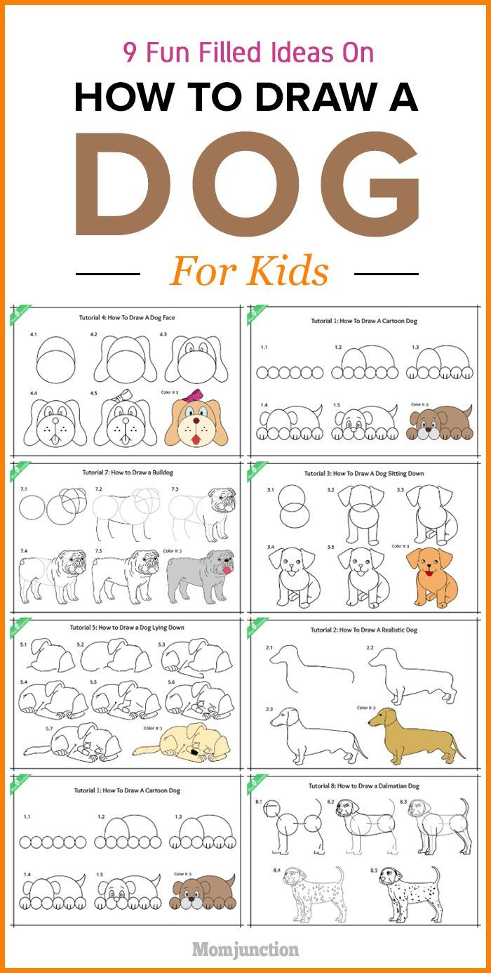 step by step guide on how to draw a dog for kids dog craft and