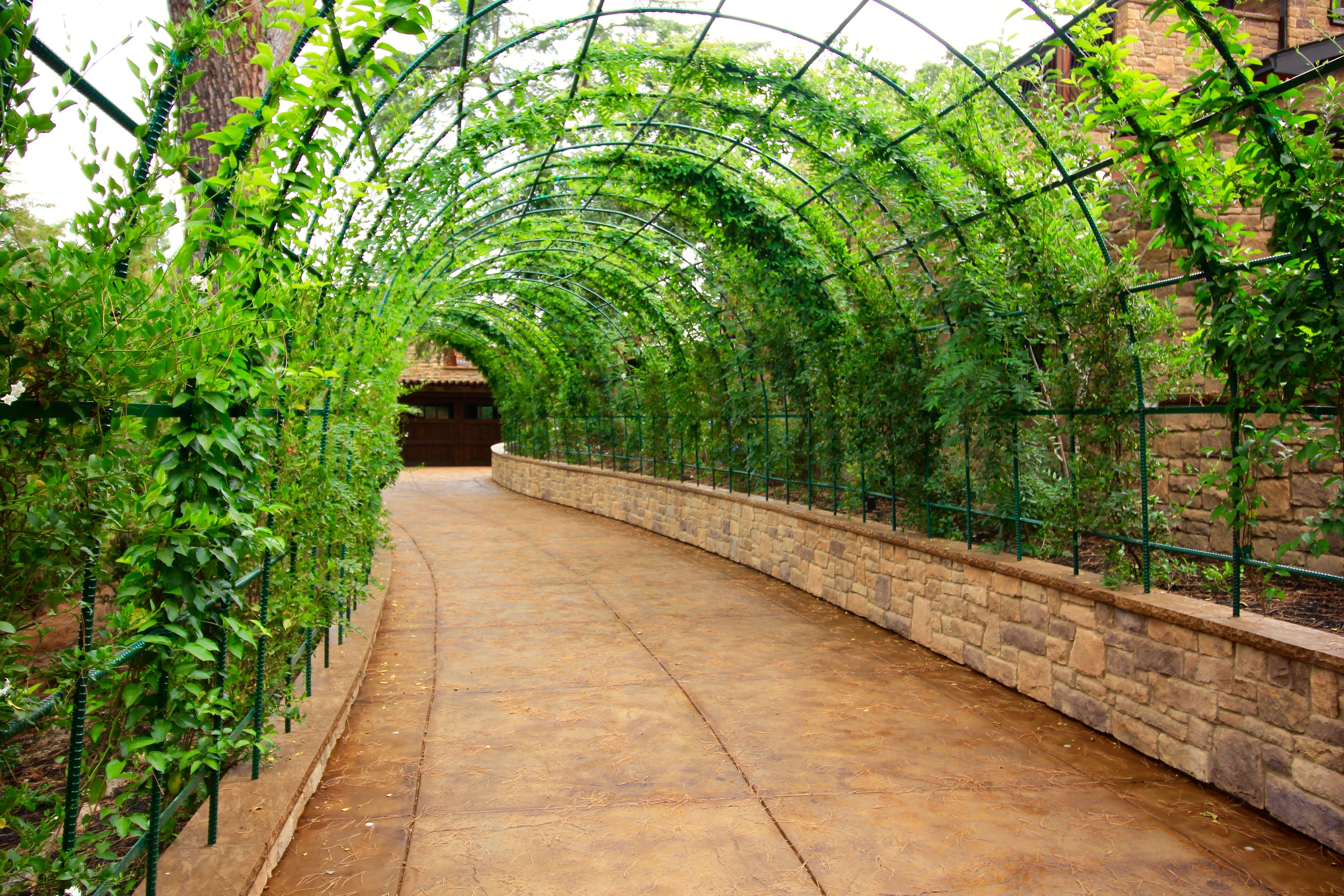 Living Tunnel Driveway Vines Growing Over Rebar Arches Secured Into Retaining Walls With Stone Fin Stamped Concrete Driveway Concrete Driveways Outdoor Design