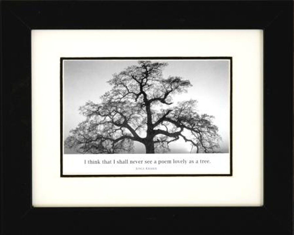 Professionally framed oak tree at sunset by ansel adams black white photograph 8x10 with quote art poster print motivational inspirational famous