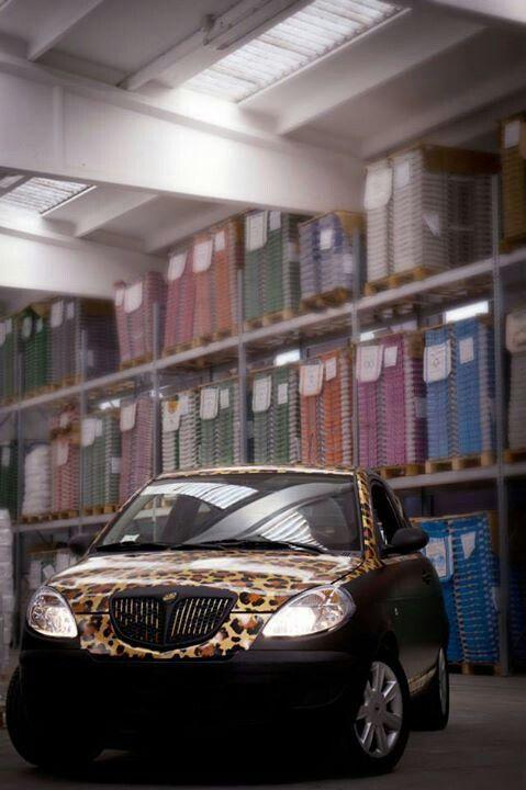 Gold Leopard Amp Black Lancia Y Business Vehicle Wrap