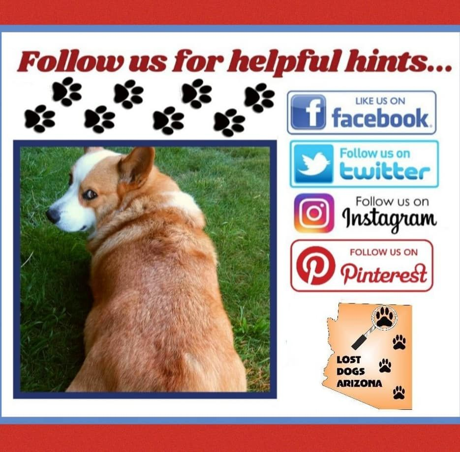Check Out Our Other Social Media Accounts Our Facebook Twitter