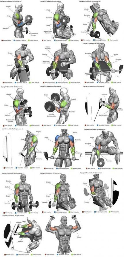 33+ Super Ideas fitness motivacin arms muscle #fitness