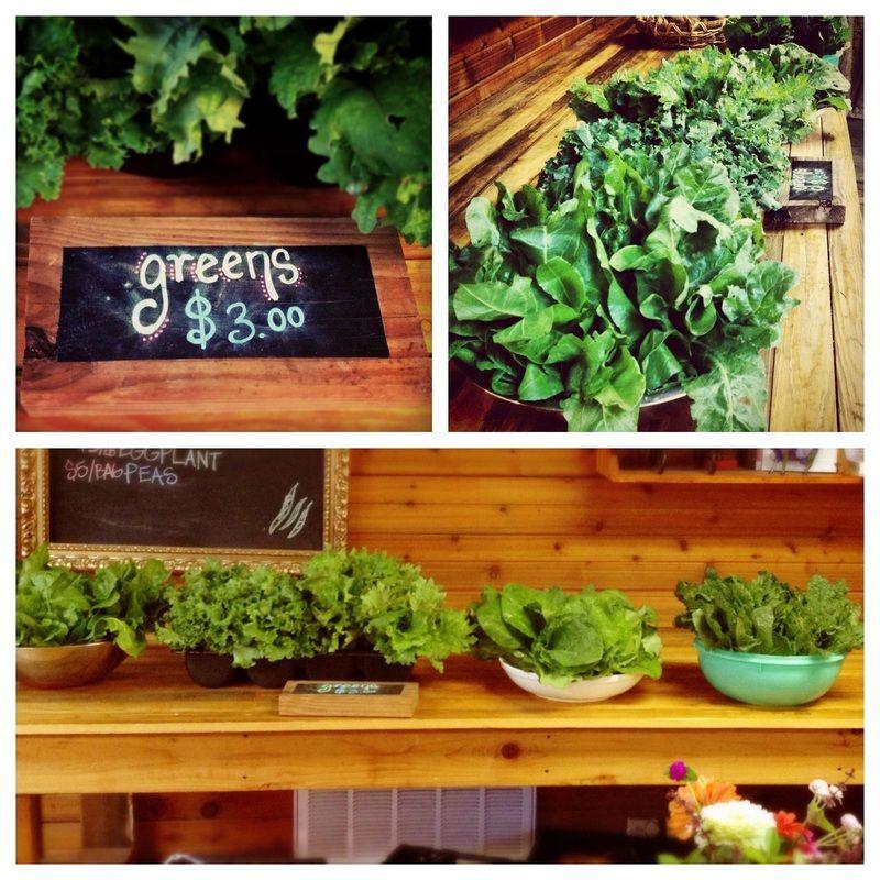 SPRINGDALE FARM AUSTIN - Springdale Farm :: Austin, Texas