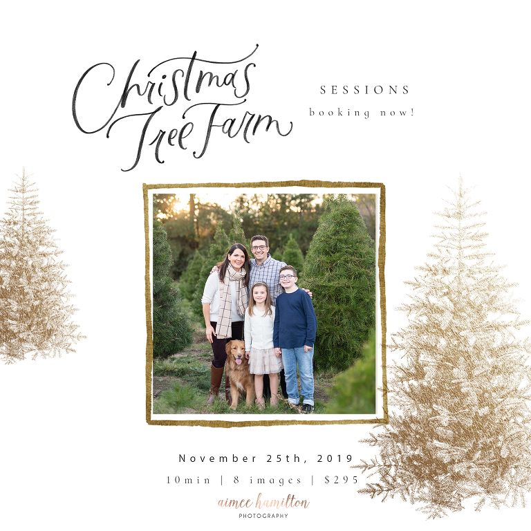 Houston Christmas Tree Farm Mini Session Tree Farm Mini Session Christmas Tree Farm Mini Session Christmas Minis